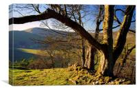 View of Mam Tor, Canvas Print