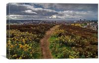 Parkwood Springs View over Sheffield , Canvas Print