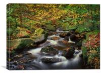 Autumn in Padley Gorge, Canvas Print