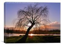 WINTER SUNSET RIVER AVON SALISBURY, Canvas Print