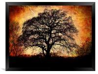 Fiery Winter Tree, Framed Print