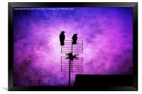 Two Crow Violet, Framed Print