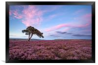 Egton Moor Heather, Framed Print