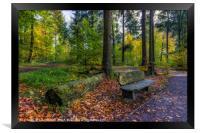 Autumn Forest Walks, Framed Print