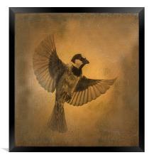 Flight of the Sparrow, Framed Print