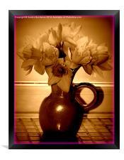 Daffodils, Framed Print