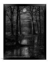 Troll Woods, Framed Print