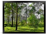 Bukidnon, Mindanao,Philippines, Framed Print