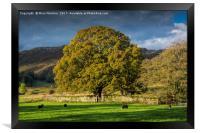 Langdale Valley, Framed Print