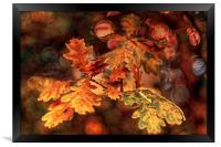 Colours of Oak, Framed Print