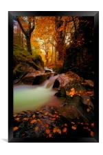 If You Go Down To The Woods Today, Framed Print
