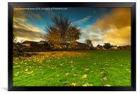 Autumn Dawn, Framed Print