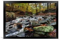 Autumnal colours in Roddlesworth - Tockholes woods, Framed Print