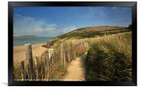 Along the coast path by the River Camel near Rock , Framed Print