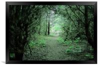Through the forest arch, Framed Print