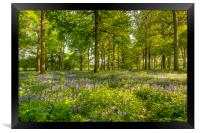 Spring Blue & Green, Framed Print