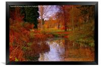 Autumns Golden Colour, Framed Print