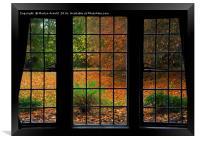 Autumn through the Window, Framed Print