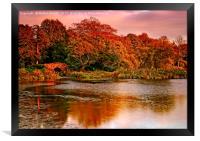 Autumn Sunset at Hardwick Park, Framed Print