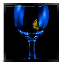 Moth on a Wine Glass, Framed Print