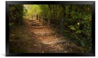 Autumn steps, Framed Print