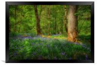 Mystical woodland, Framed Print