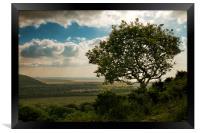 The Watcher, Framed Print