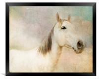 Spirit Horse, Framed Print