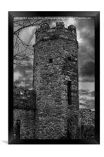 East Wall Tower, Framed Print