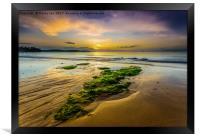 Golden Sands., Framed Print