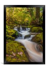 Golitha Falls. , Framed Print