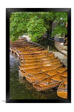 Boats for hire, Framed Print