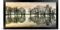 Reflections in the Flood, Framed Print