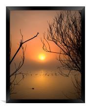 Cosmeston Lake with mist, Framed Print