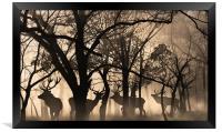four deer , Framed Print