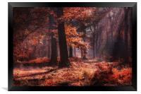Fresh Autumn Woodlands, Framed Print