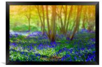 Dreaming of spring, Framed Print