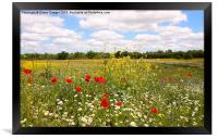 Kent countryside meadow, Framed Print