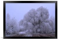 Wintry Weeping Willow, Framed Print