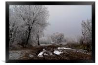 Winter Country Lane, Framed Print