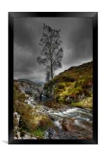 Lonely Tree, Framed Print