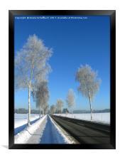 Hoar Frost, Framed Print