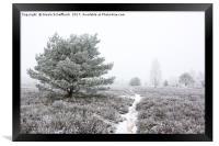 Frozen Heath, Framed Print