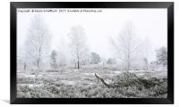 Frosty Heathland , Framed Print