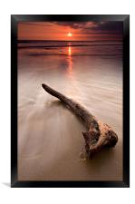 Driftwood at sunset, Framed Print