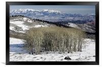 Utah Landscape in Winter, Framed Print