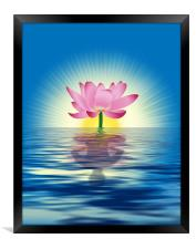 Lotus Reflection, Framed Print