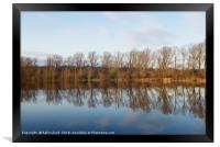 Whitlingham Broad Tree Reflections, Framed Print