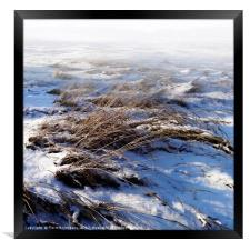 New Snow, Framed Print