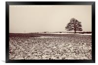 The Tree in the mist, Framed Print